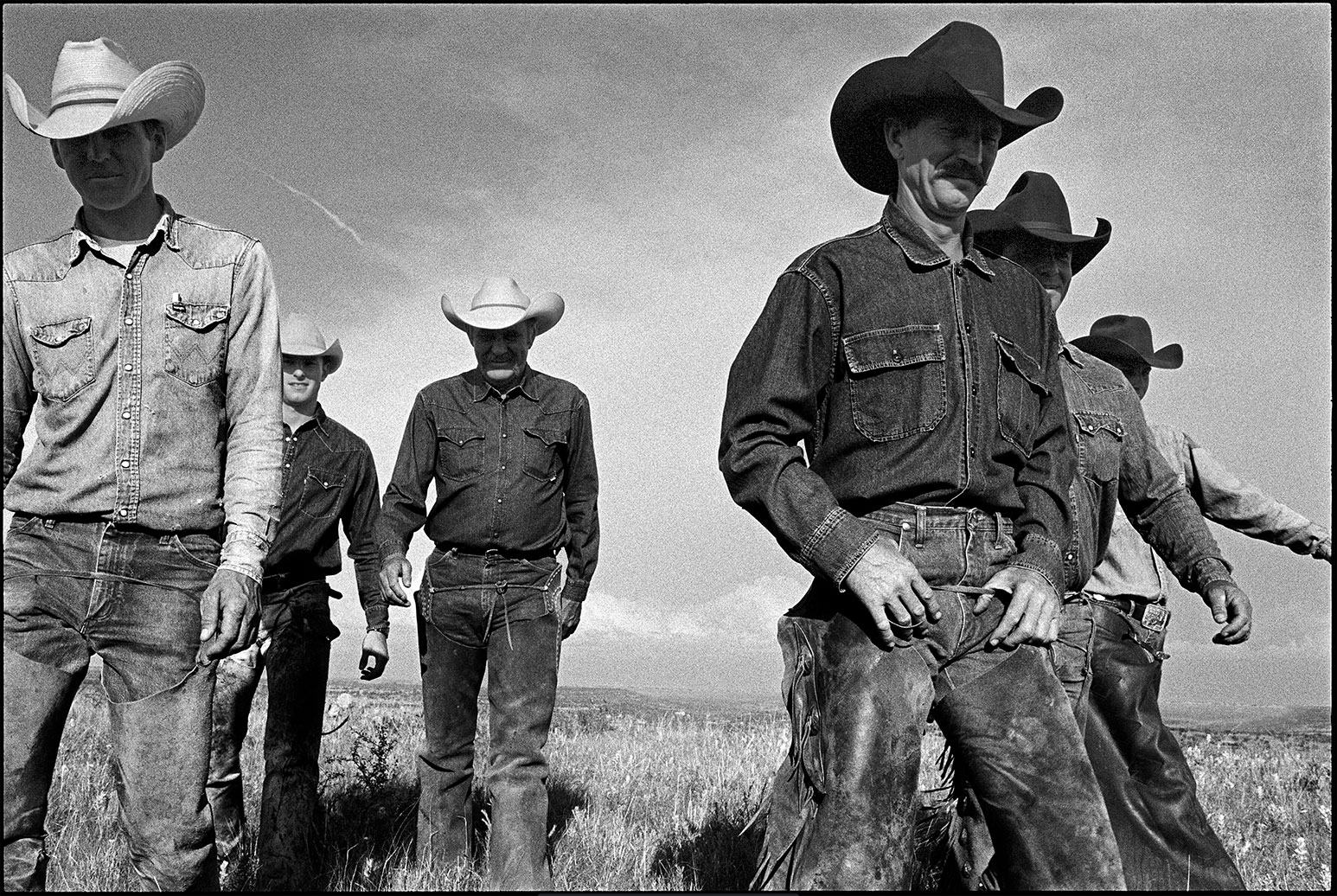 Cowboys Walking, J.R. Green Cattle Company, Schackelford County, Texas, 1997