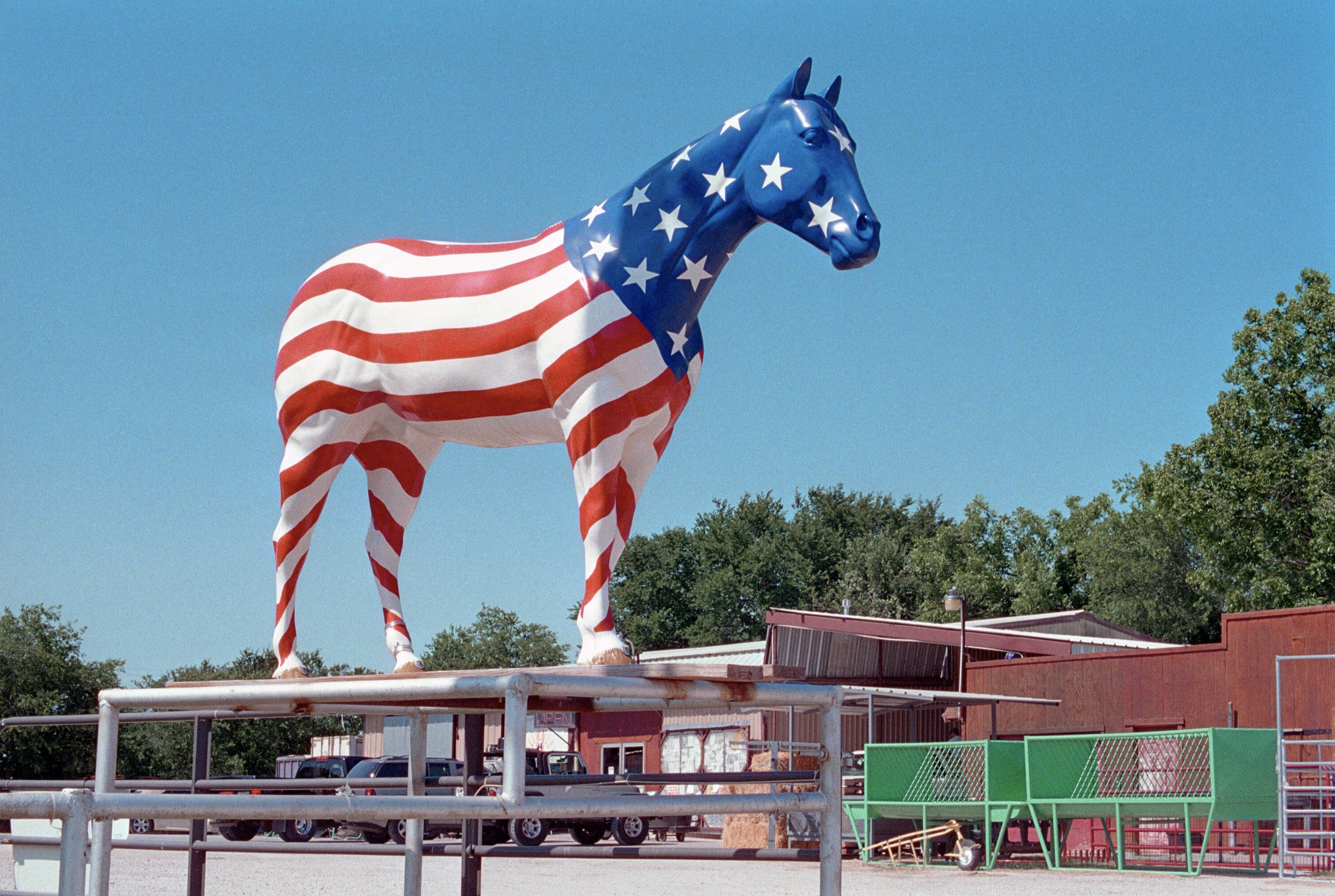 Horse Sign, Weatherford, Texas, 2008